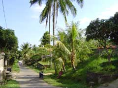 写真 村の様子 April 2005 撮影