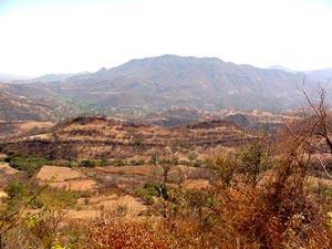 高速道路からの風景 March 2001 撮影