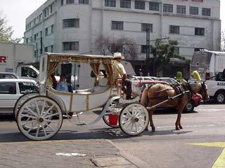 街中の馬車 Junuary 2003 撮影