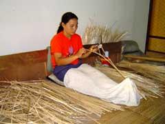 写真 作業の様子 April 2005 撮影